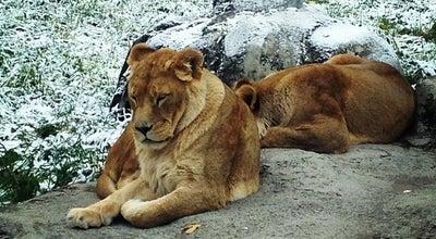 Photo of Zoo Calgary Zoo at 1300 Zoo Rd. Ne, Calgary, AB T2V 7E6, Canada
