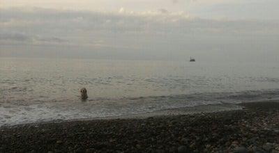Photo of Beach Ardeşen Işıklı Köyü Yeniay Plajı at Turkey