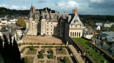 Photo of Castle Château de Langeais at Rue Foulques Nerra, Langeais 37130, France