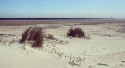 Photo of Beach De Hors at Netherlands