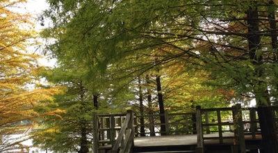 Photo of Park 都市緑化植物園(グリーンピア春日井) at 細野町3249-1, 春日井市, Japan