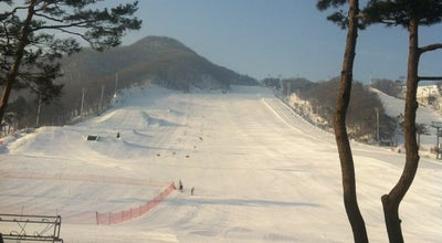 Photo of Resort 지산포레스트리조트 (Jisan Forest Resort) at 마장면 지산로 267, 이천시 17390, South Korea