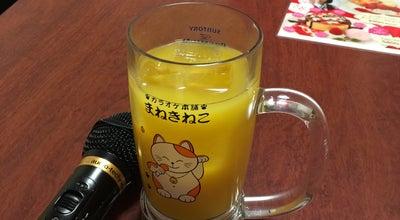 Photo of Karaoke Bar カラオケ本舗まねきねこ 土岐店 at 土岐市, Japan