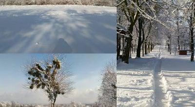 Photo of Mountain Кортумова Гора at Вул. Винниця, Львів, Ukraine