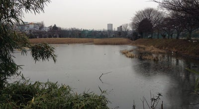 Photo of Lake 白幡沼 at 白幡1丁目, さいたま市 336-0022, Japan