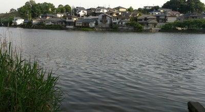 Photo of Lake 松沢池 at Japan