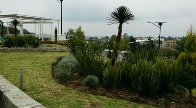 Photo of Theme Park Plaza Estado De Mexico Dedicada A La Comunidad Libanesa at Mexico