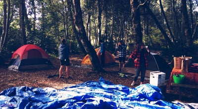 Photo of Campground MacKerricher State Park Campground at Fort Bragg, CA 95437, United States