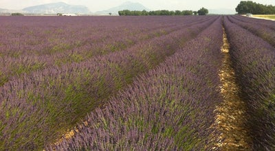 Photo of Other Great Outdoors Provence at France, France