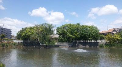 Photo of Lake 小寺池 at 西五百住町1, 高槻市, Japan