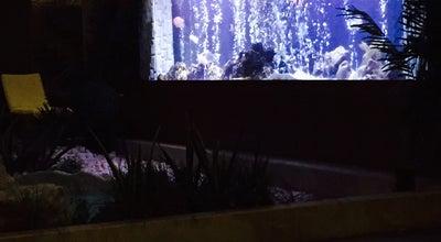 Photo of Modern European Restaurant Kempinski Badamdar Lobby Bar and Summer Terrace at M. Mushfig St., 1c, Baku 1006, Azerbaijan