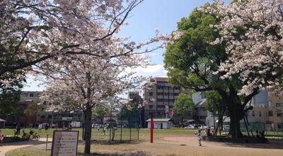Photo of Park 共研公園 at 中央町14, 鹿児島市 890-0053, Japan