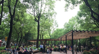 Photo of Park 襄阳公园 Xiangyang Park at 淮海中路1008号, 上海, 上海 200031, China