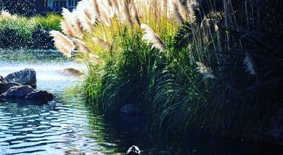 Photo of Lake The Lake At Woodlake at San Mateo, CA, United States