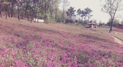 Photo of Park 고강선사유적공원 at 경기도 부천시 오정구, South Korea