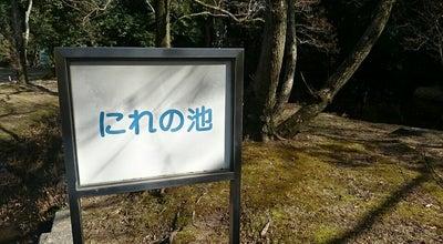 Photo of Lake 大阪万博記念公園 にれの池 at 千里万博公園10, Suita 565-0826, Japan