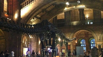 Photo of Restaurant Natural History Museum Restaurant at Cromwell Rd, Kensington SW7 5BD, United Kingdom