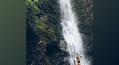Photo of Trail Lulumahu Falls at 3310 Pali Hwy, Honolulu, HI 96817, United States