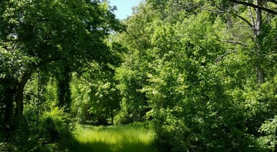 Photo of Park Lake Atalanta Park at Rogers, AR 72756, United States