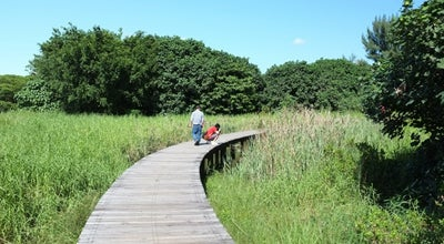 Photo of Nature Preserve Hong Kong Wetland Park at Wetland Park Rd, Tin Shui Wai, Hong Kong