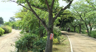 Photo of Park 瑞ケ池公園 at 瑞ケ丘5, 伊丹市 664-0017, Japan
