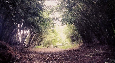 Photo of Trail Happy Valley at Bramhall, United Kingdom
