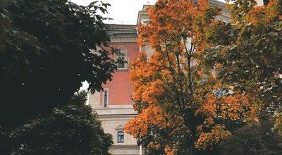 Photo of Outdoor Sculpture Памятник псу Гаврюше at Ул. Правды, 13, Санкт-Петербург, Russia