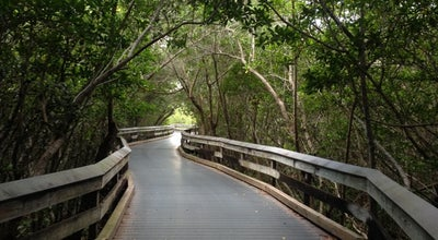 Photo of Trail Clam Pass Boardwalk at 410 Seagate Dr, Naples, FL 34108, United States