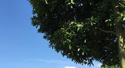 Photo of Park はらっパーク宮代 at 字金原295, 南埼玉郡宮代町, Japan