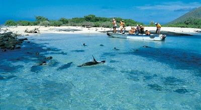 Photo of Island Archipiélago de Galápagos at Ecuador