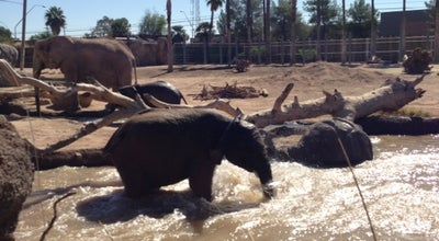 Photo of Arts and Entertainment Reid Park Zoo - Elephant Exhibit at 1030 S Randolph Way, Tucson, AZ 85716, United States