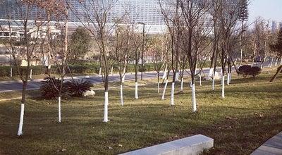 Photo of Park 锦城公园 at China
