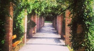 Photo of Park Εθνικός Κήπος (National Garden) at Λεωφ. Βασιλίσσης Αμαλίας 1, Αθήνα 105 57, Greece