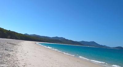 Photo of Beach Whitehaven Beach at Whitsunday Island, QL 4802, Australia