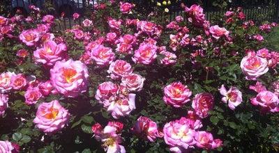 Photo of Garden San Jose Municipal Rose Garden at Naglee Ave., San Jose, CA 95126, United States