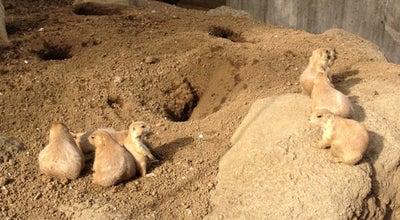 Photo of Zoo 江戸川区自然動物園 at 北葛西3-2-1, 江戸川区 134-0081, Japan