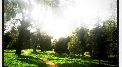 Photo of Park Κτήμα Συγγρού at Λεωφ. Κηφισίας, Μαρούσι, Greece
