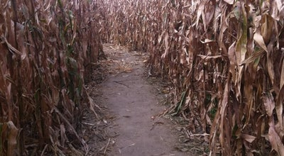 Photo of Farm Liberty Corn Maze at 17607 Ne 52nd St, Liberty, MO 64068, United States