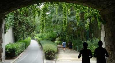 Photo of Trail Promenade plantée – La Coulée Verte at La Coulée Verte, Paris 75012, France