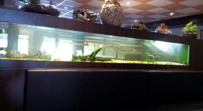 Photo of Chinese Restaurant Peking at Marsdiepstraat 375, Den Helder 1784AH, Netherlands