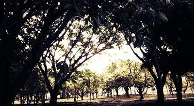 Photo of Park Jardín de los Borrachos at Jose Alcaraz, Colima, Mexico