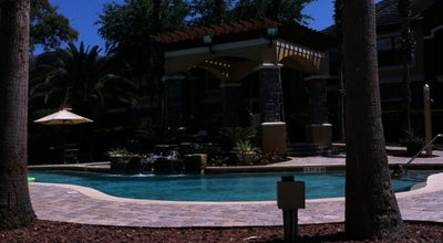 Photo of Pool Pool@ Tuscany at Palm Harbor, FL, United States