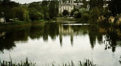 Photo of Lake Feneketlen-tó at Kosztolányi Dezső Tér, Budapest 1118, Hungary