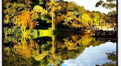 Photo of Park Bosque Maia at Av. Paulo Faccini, Guarulhos 07170-330, Brazil