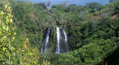 Photo of Scenic Lookout Opaekaa Falls at 5558-5576 Kuamoo Rd, Puhi-Hanamaulu, HI 96746, United States