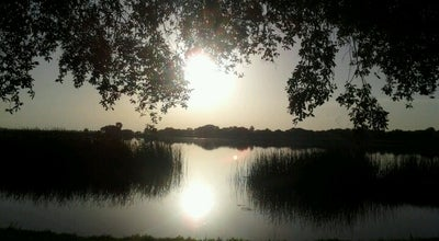 Photo of Lake Lake Parker at Lakeland, FL, United States