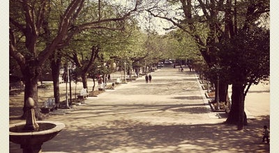 Photo of Park Parque da Alameda at Paseo Da Alameda, Santiago de Compostela 15706, Spain
