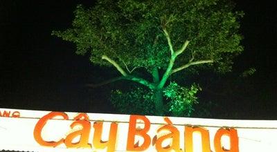 Photo of Vietnamese Restaurant Cây Bàng Restaurant at Trần Phú, Vung Tau, Vietnam