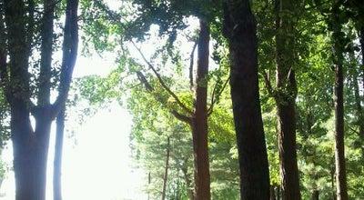 Photo of Park 남산공원 at 용산구 남산공원길 105, 서울특별시 04340, South Korea