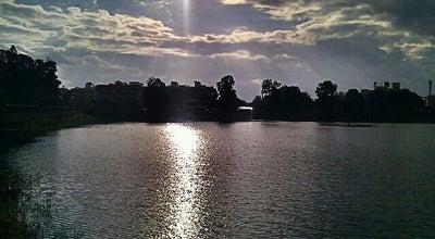 Photo of Lake Yediyur Lake at Yediyur, Bangalore, India